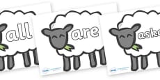 Tricky Words on Sheep