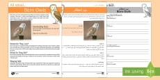 Barn Owls Reading Comprehension Pack English/Arabic
