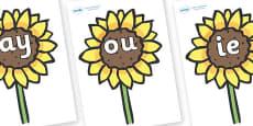 Phase 5 Phonemes on Sunflowers