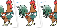 Days of the Week on Rooster