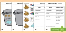 * NEW * What's in the Bin? (3) Inferences Activity Sheet