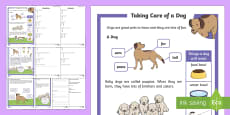 * NEW * KS1 How To Look After a Dog Differentiated Reading Comprehension Activity