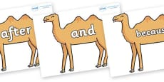 Connectives on Camels