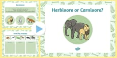 Living Things and their Habitats Herbivore or Carnivore Lesson Teaching Pack PowerPoint
