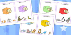 'What's In the Box?' Drawing Inferences Activity Cards