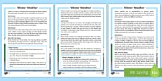 KS1 Winter Weather Differentiated Fact File