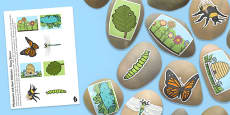 Minibeasts and Their Habitats Story Stone Image Cut Outs