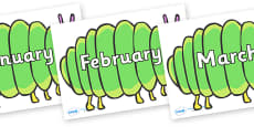 Months of the Year on Fat Caterpillars to Support Teaching on The Very Hungry Caterpillar