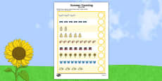 Summer Counting Activity Sheet Chinese Mandarin Translation