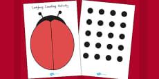 Ladybug Spot Counting Activity