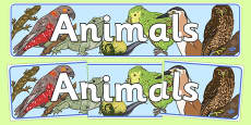 Animals Display Banner New Zealand