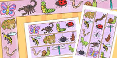 Australia - Minibeasts Cute Display Border