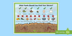 What to Feed Worms in a Worm Farm Display Poster