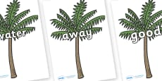 Next 200 Common Words on Palm Trees