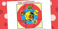 Life Cycle of a Ladybird Jigsaw