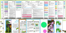 EYFS Life Cycle of a Butterfly Adult Input Planning and Resource Pack