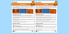 Autumn Differentiated Fact File Spanish Translation