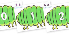 Numbers 0-31 on Fat Caterpillars to Support Teaching on The Very Hungry Caterpillar