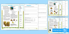 Fairtrade Differentiated Comprehension Go Respond Activity Sheets
