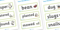 Word Cards to Support Teaching on Jasper's Beanstalk