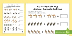 * NEW * Arabian Animals Addition Activity Sheet Arabic/English
