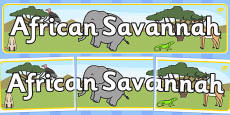 African Savannah Display Banner