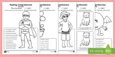 Reading Comprehension   Three Key Words Activity Sheet - English/Mandarin Chinese
