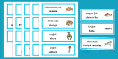 Under the Sea Word Cards English/Te Reo Māori