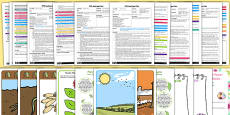 EYFS Plant Life Cycles Adult Input Planning and Resource Pack