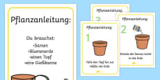 How to Grow a Plant Posters German