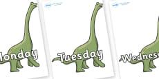 Days of the Week on Brachiosaurus