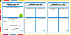 Character Profile Sophie Activity Sheet to Support Teaching on The BFG