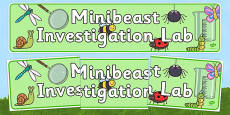 Minibeasts Investigation Lab Role Play Display Banner
