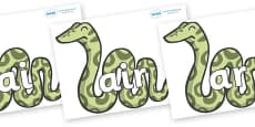 Phase 3 Phonemes on Snakes