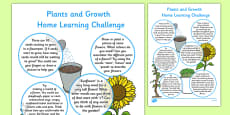EYFS Plants and Growth Home Learning Challenge Sheet Reception FS2