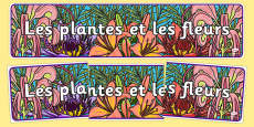 Plants and Flowers IPC Display Banner French
