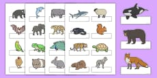 Editable Self Registration Labels (Animals)