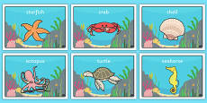 Under the Sea Class Group Signs