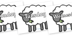 Days of the Week on Sheep