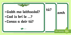 Everyday Questions and Phrases Display Posters Gaeilge