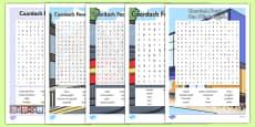 Irish Gaeilge Siopadóireacht Word Search Pack
