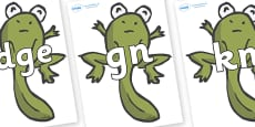 Silent Letters on Froglets