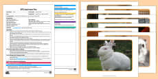EYFS Name that Pet Adult Input Plan and Resource Pack