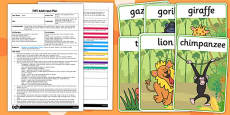 EYFS Movement Activity Adult Input Plan and Resource Pack to Support Teaching on Rumble in the Jungle