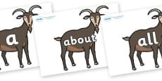 100 High Frequency Words on Big Billy Goats