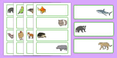 Editable Drawer - Peg - Name Labels (Animals)