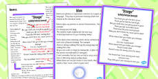 Year 5 and 6 Figurative Language Activity and Reference Sheet Idiom