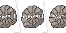 Months of the Year on Fossils