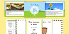EYFS Sam's Seeds Story PowerPoint and Resource Pack
