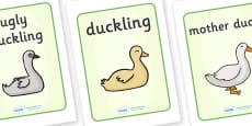 The Ugly Duckling Display Posters